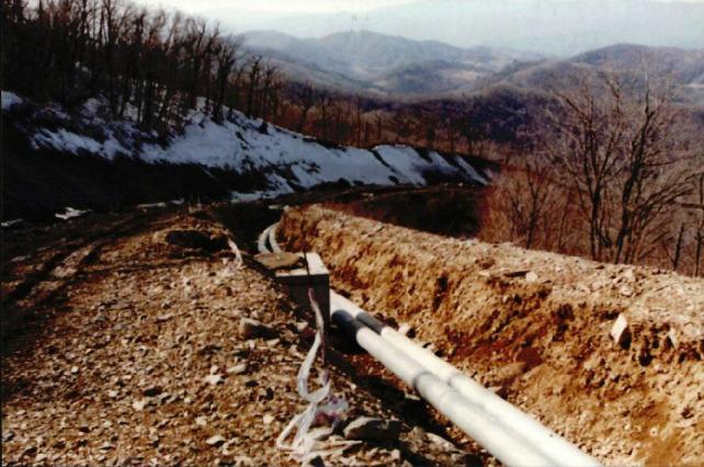 산림훼손 사진자료 4