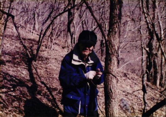 1998 강원 올무제거 22