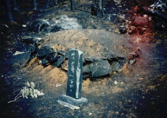 2000.4 강원도 산불 발화점인 양지마을의 산불현장 및 산불피해지역 현장사진 4