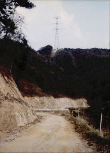 송전탑과 산림훼손 2