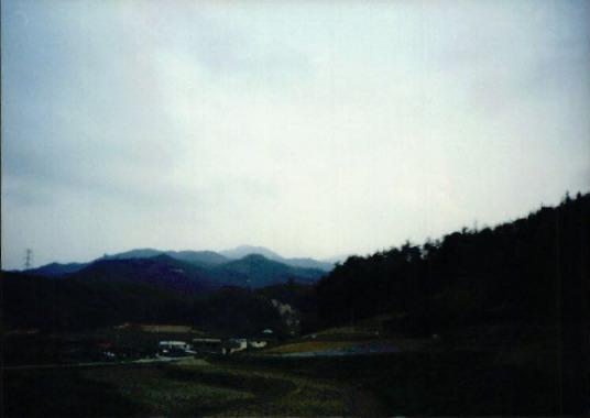 2000.4 강원도 산불 발화점인 양지마을의 산불현장 및 산불피해지역 현장사진 13