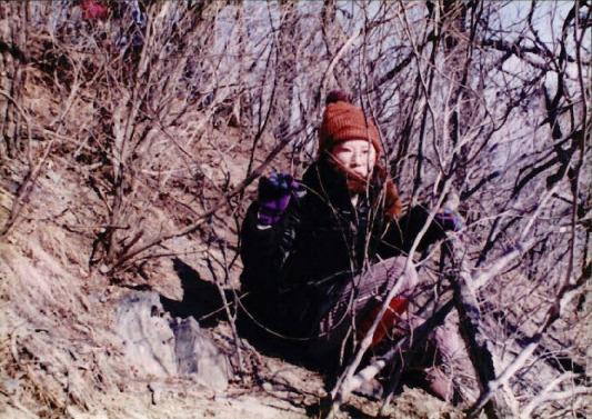 1998 강원 올무제거 10