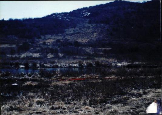 [지리산 댐 관련 사진 #8]