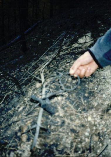 2000.4 강원도 산불 발화점인 양지마을의 산불현장 및 산불피해지역 현장사진 15