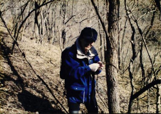 1998 강원 올무제거 9