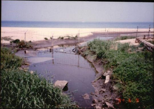 갯벌 및 해양 사진 10 - 분뇨처리장 배출수