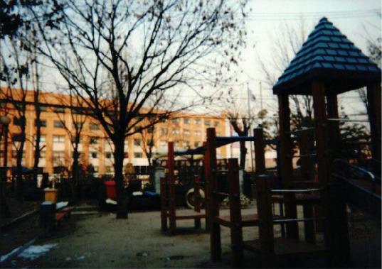 2000년 어린이 놀이터 구별 조사 17