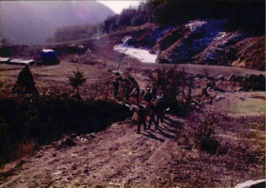 1998 강원 올무제거 6 - 98강원 - 올무제거 - 1