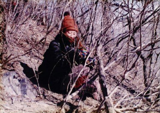 1998 강원 올무제거 21