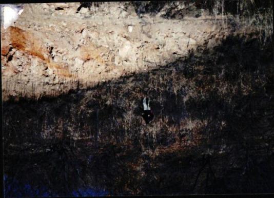 [지리산 댐 관련 사진 #7]