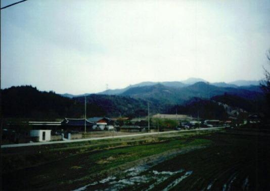 2000.4 강원도 산불 발화점인 양지마을의 산불현장 및 산불피해지역 현장사진 11