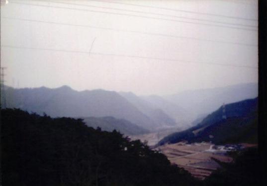 송전탑과 산림훼손 17