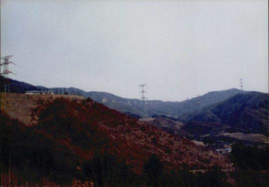 송전탑과 산림훼손 14
