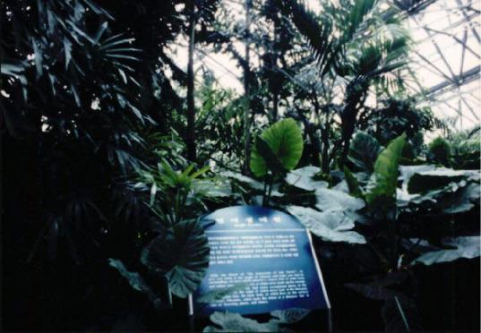 제주도 여미지 식물원 매각 반대운동 7