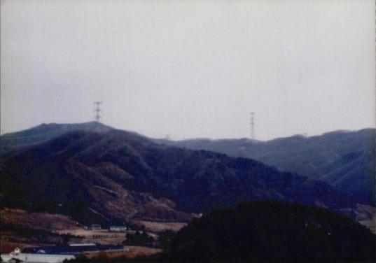 송전탑과 산림훼손 15
