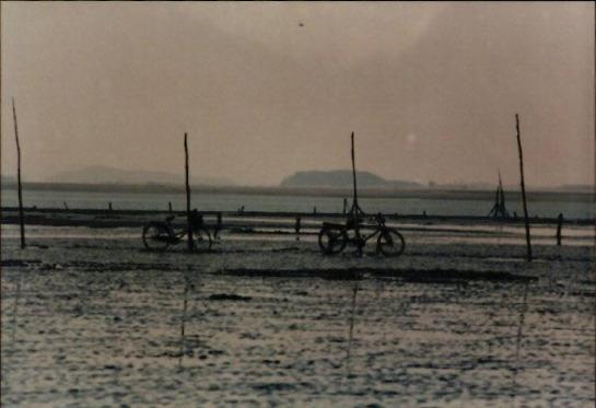 갯벌 및 해양 사진 2 - 서산 서해갯벌