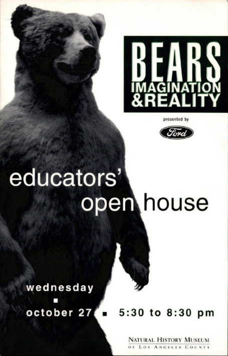 Bears imagination & reality