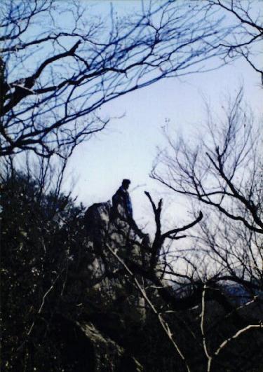1998 강원 올무제거 12