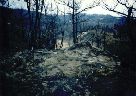 2000.4 강원도 산불 발화점인 양지마을의 산불현장 및 산불피해지역 현장사진 6