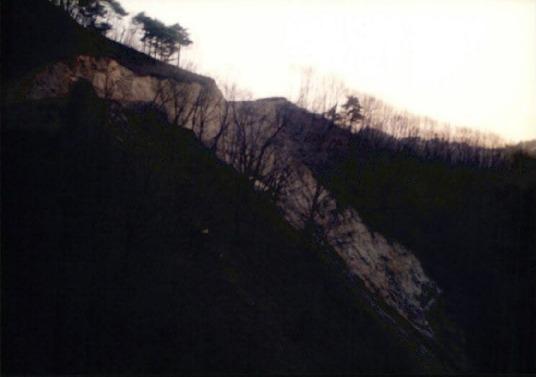 송전탑과 산림훼손 7